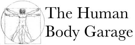 The Human Body Garage
